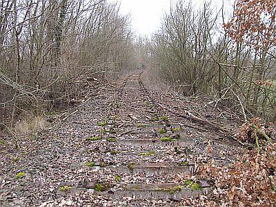 http://hessische-ludwigsbahn.de/RTS12131.jpg